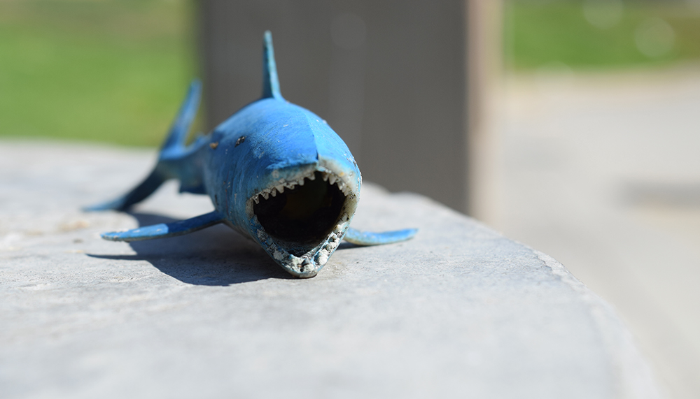 WTF: A small toy was left on the base of a concrete streetlight on the edge of the MacArthur Park lake. The shark was one of many strange objects strewn in the grass and on benches in the park.